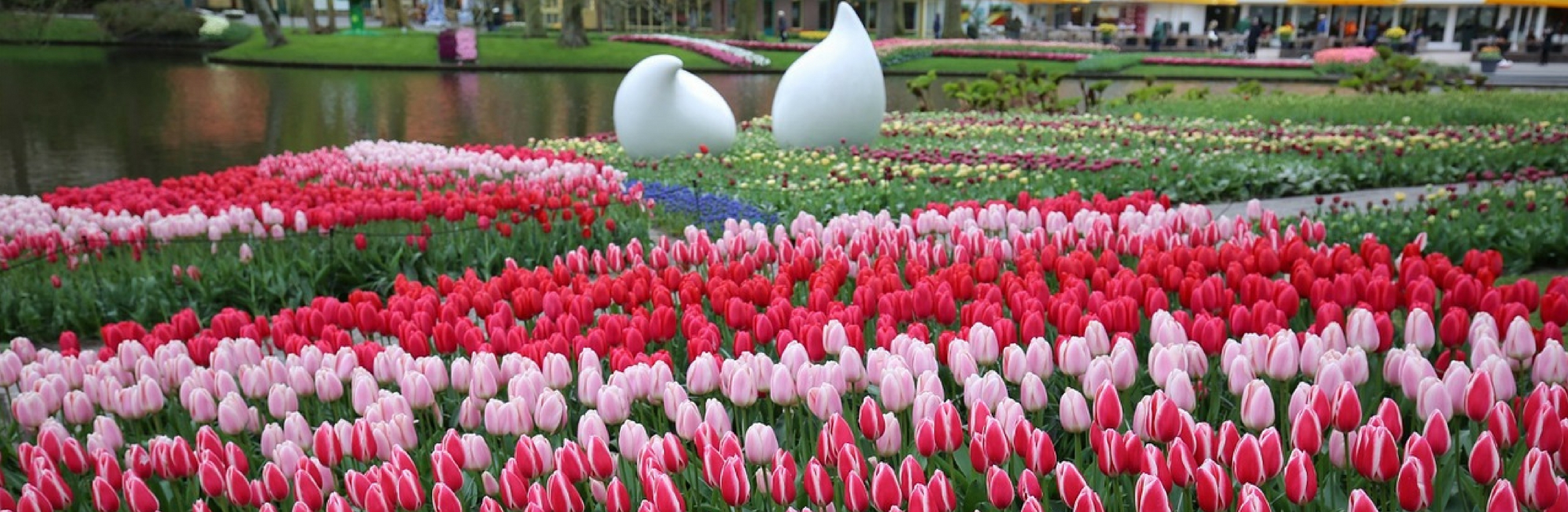 IMG : 6 Beautiful Flower Shows to visit in Europe
